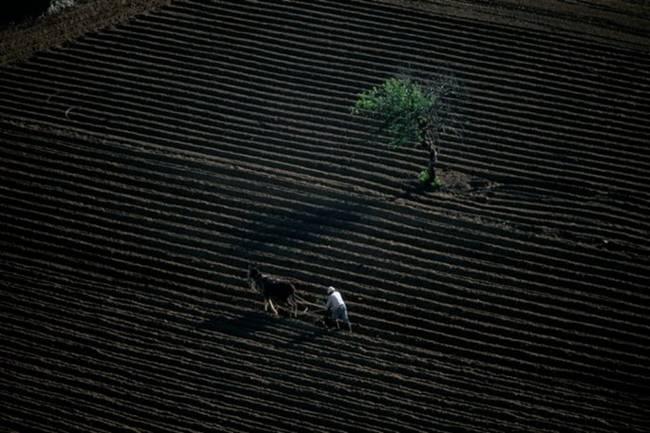 Aerial-Photographs-by-Yann-Arthus-Bertrand-12