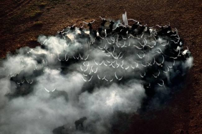 Aerial-Photographs-by-Yann-Arthus-Bertrand-18