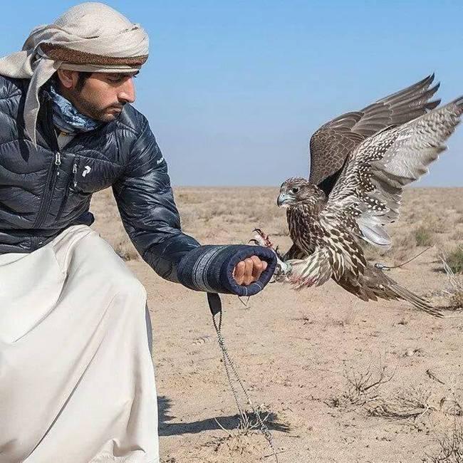 Hamdan-bin-Mohammed-Al-Maktoum-19