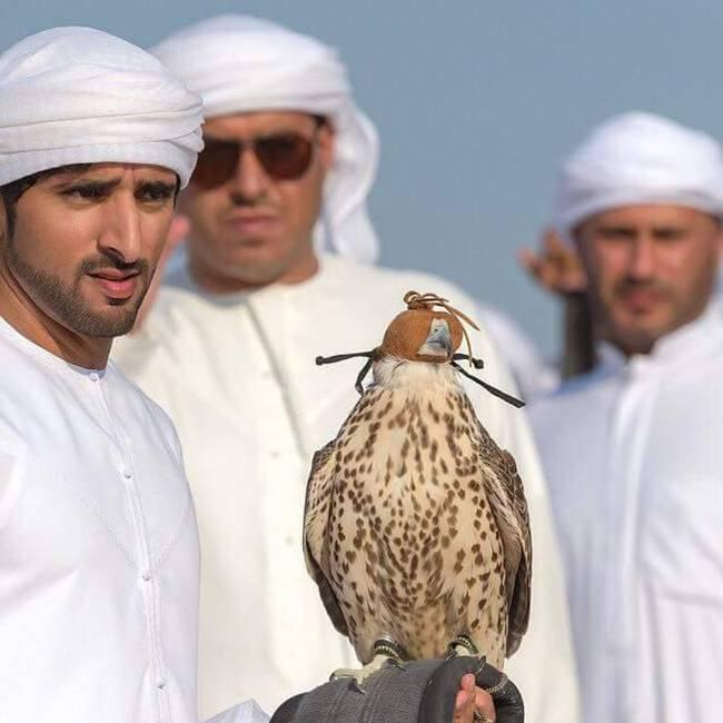 Hamdan-bin-Mohammed-Al-Maktoum-31