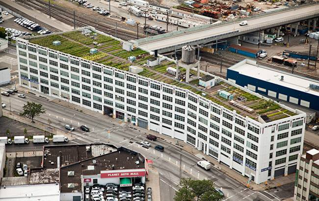 A farm on the roof of a building in New York
