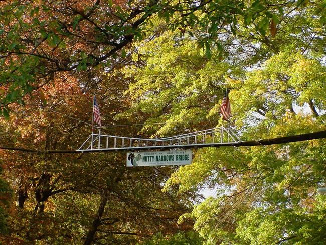 Bridge-for-Squirrels-Nutty-Narrows-Bridge-01