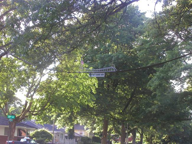 Bridge-for-Squirrels-Nutty-Narrows-Bridge-04