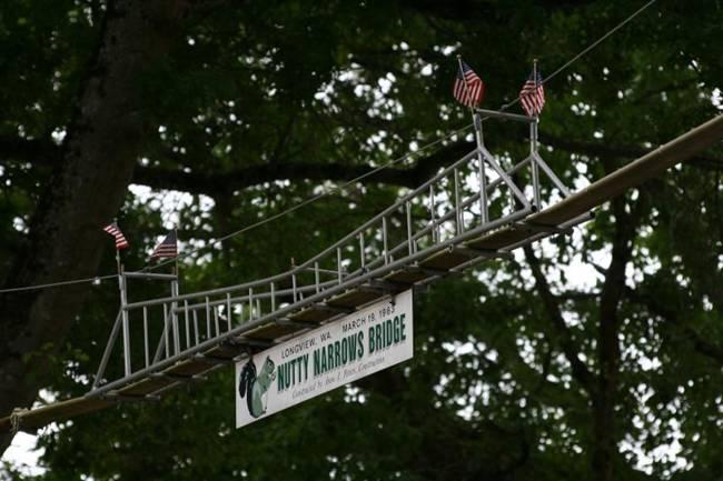 Bridge-for-Squirrels-Nutty-Narrows-Bridge-05