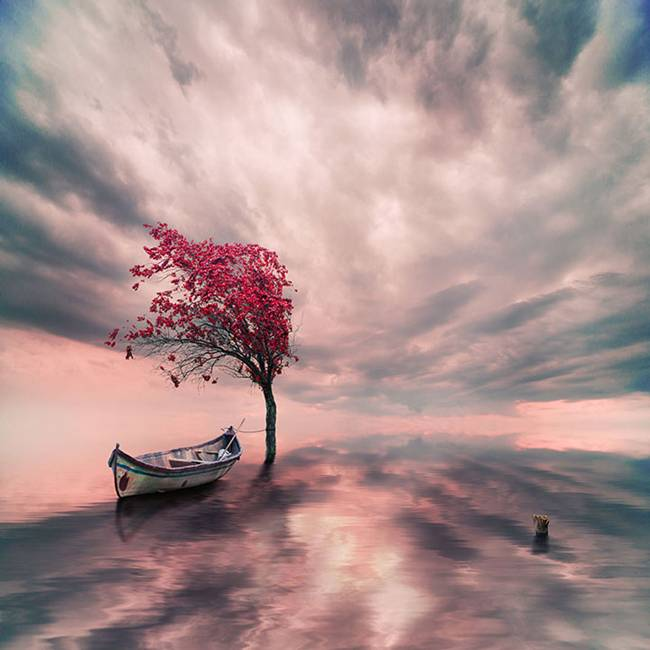 Caras-Ionut-PHOTOMANIPULATIONS-04