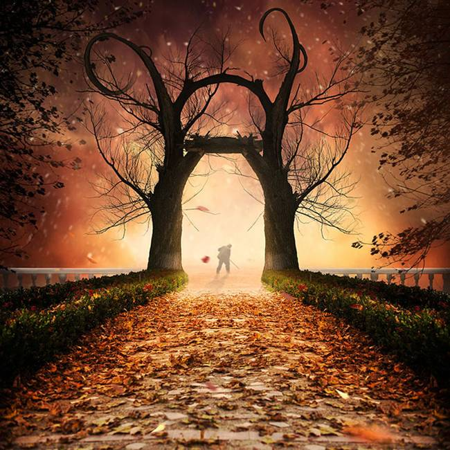 Caras-Ionut-PHOTOMANIPULATIONS-09