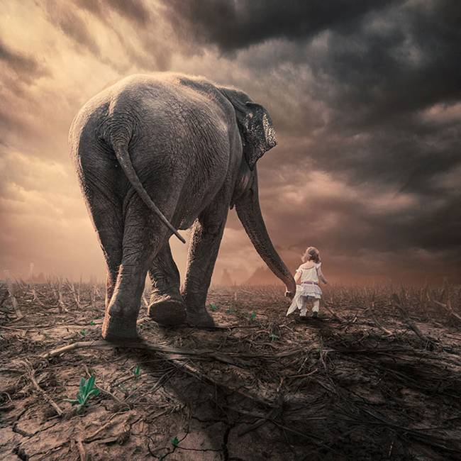 Caras-Ionut-PHOTOMANIPULATIONS-13