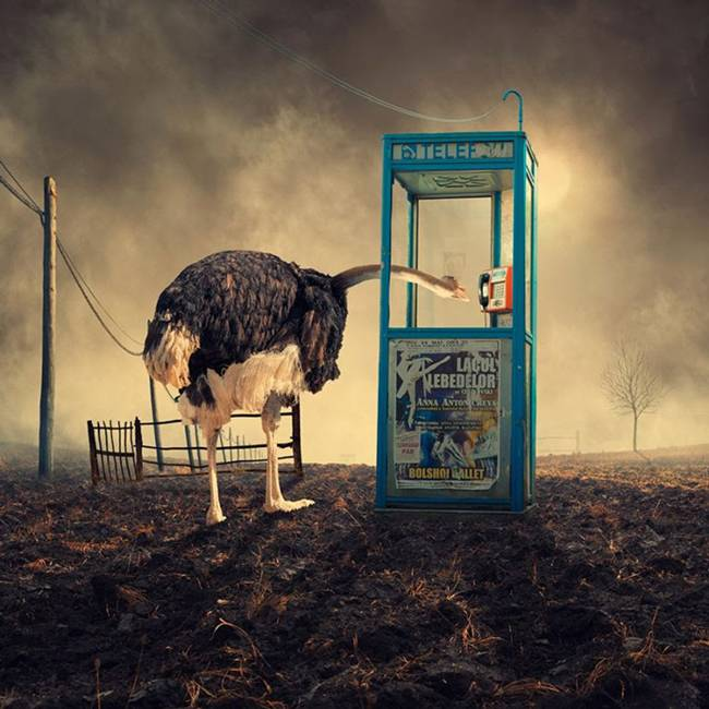 Caras-Ionut-PHOTOMANIPULATIONS-17