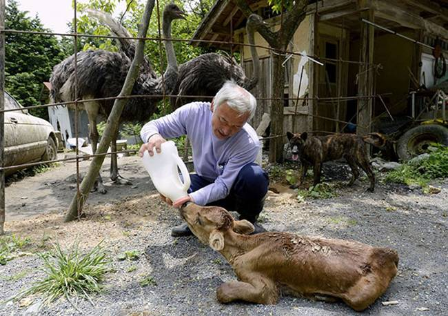 Naoto Matsumura, The man alone in the town of Tomioka Japan