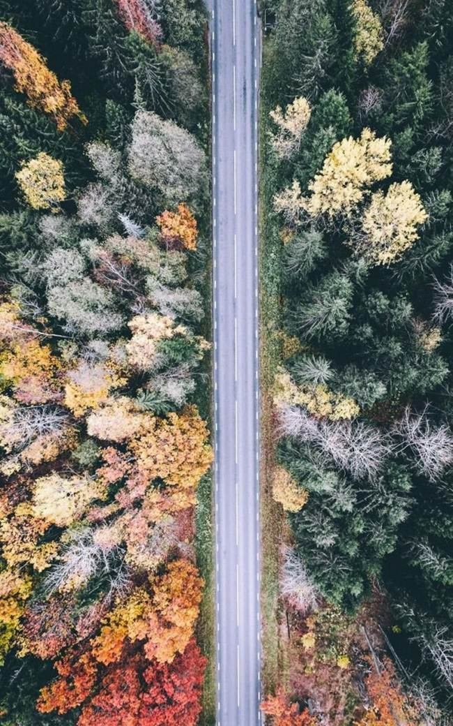 Bird's-Eye View of Changing Seasons In Sweden
