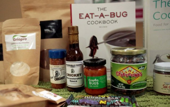 Eating Insects Detroit: Exploring the Culture of Insects as Food and Feed