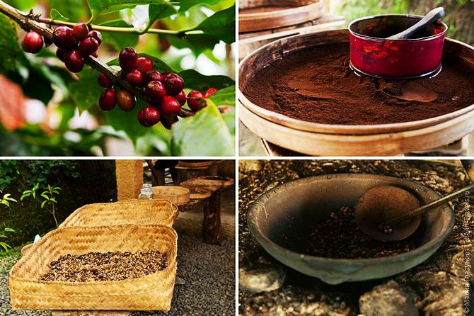 the-most-expensive-coffee-in-the-world-from-the-coffee-kakashek-015
