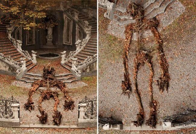 Autumn-Artwork-Never2501-002