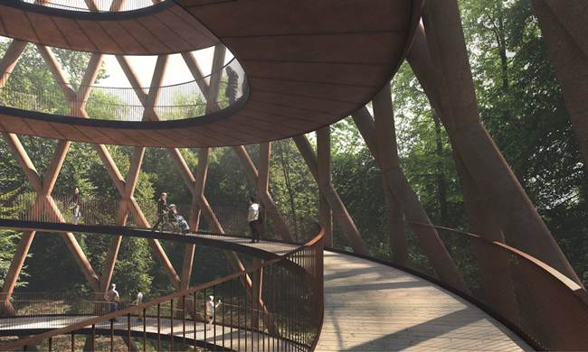 Treetop-Experience-Denmark-Forest-Walking-Platform-004