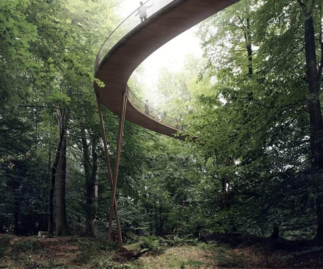 Treetop-Experience-Denmark-Forest-Walking-Platform-005