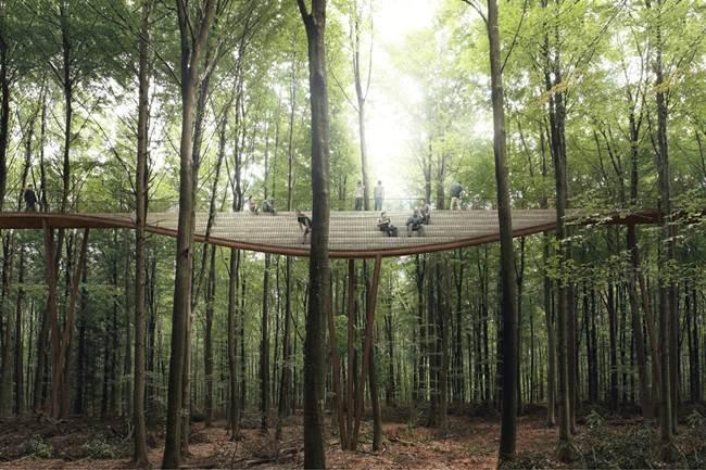 Treetop-Experience-Denmark-Forest-Walking-Platform-006