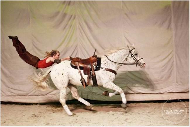 Knabstrupper-The-Spitting-Print-Horse-003